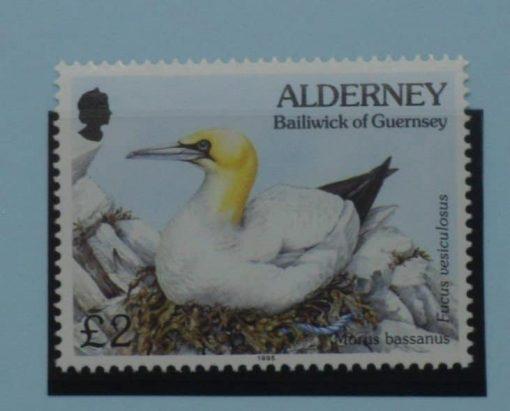 Alderney Stamps, 1994-98, SGA77, Mint 5