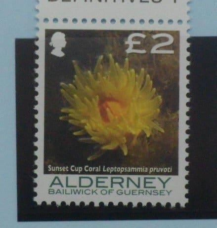 Alderney Stamps, 2006-07, SGA307, Mint 5