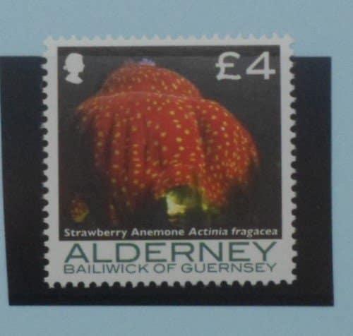 Alderney Stamps, 2006-07, SGA308, Mint 5