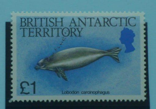 British Antarctic Territory Stamps, 1984, SG137, Mint 5
